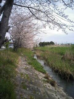 2010-04-04_10-29.jpg